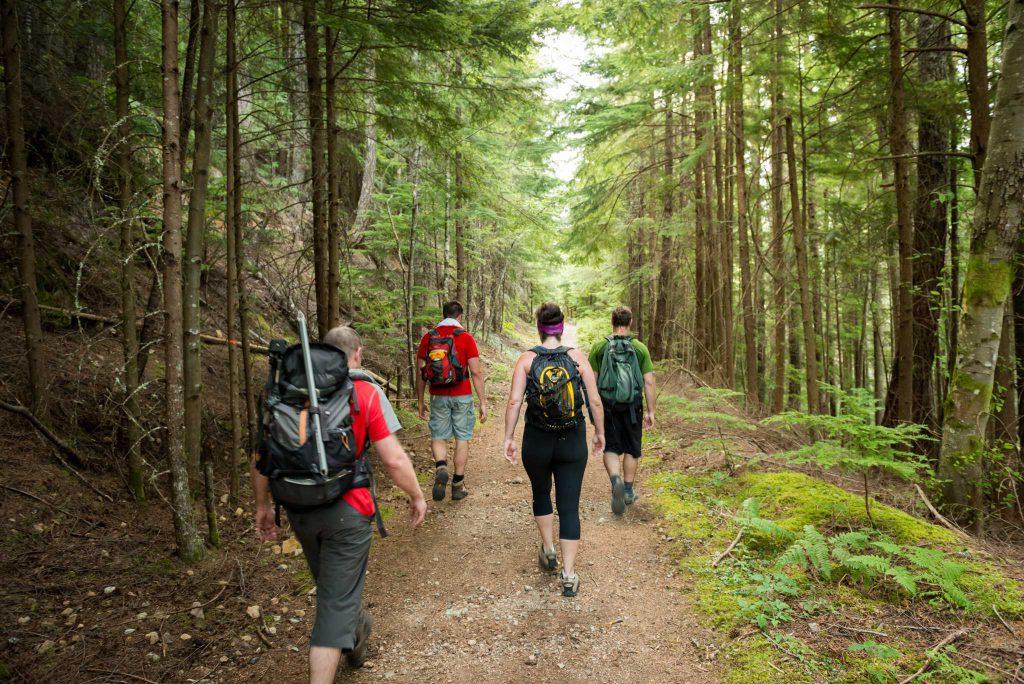 Phân biệt Hiking, Walking, Trekking, Backpacking - Chuyên trang EDC